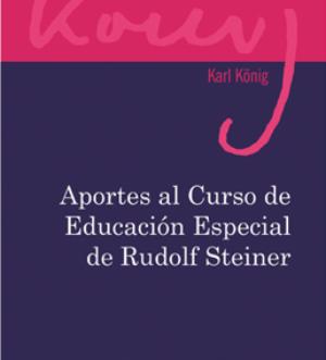 aportes-al-curso-de-educacion-especial