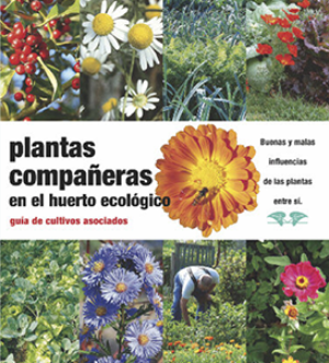 plantas-companeras-en
